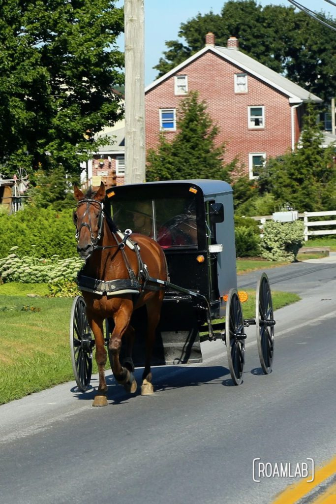 Sharing the road with a horse and buggy in Intercourse, Pennsylvania