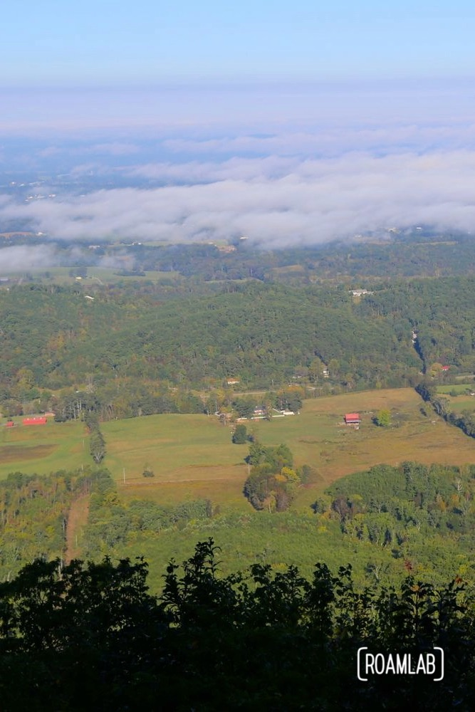 Views of Cherokee National Forest