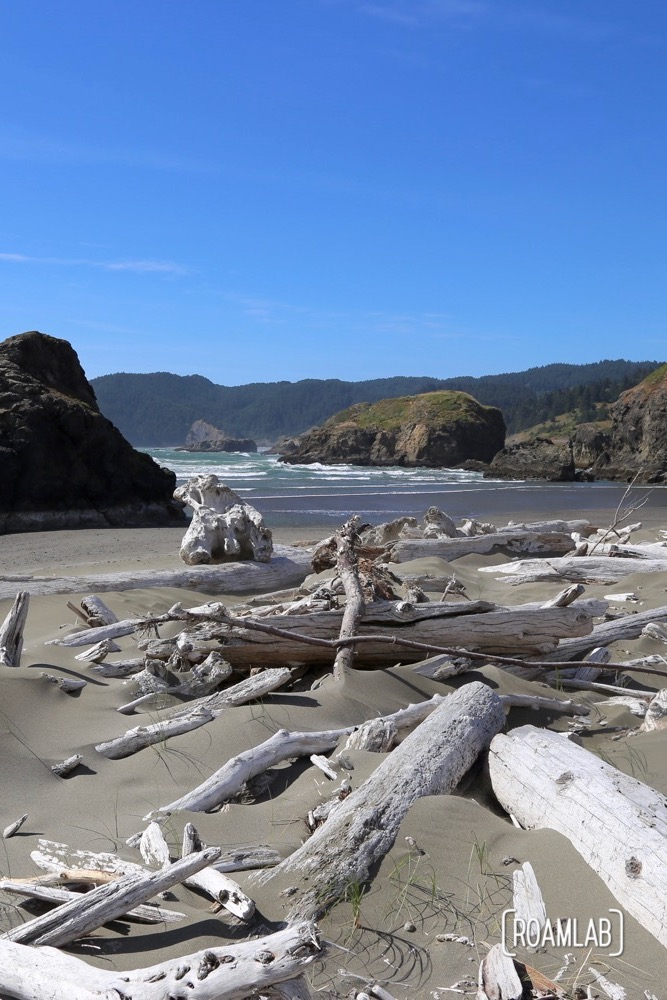 Driftwood washed ashore along the Oregon Coast.
