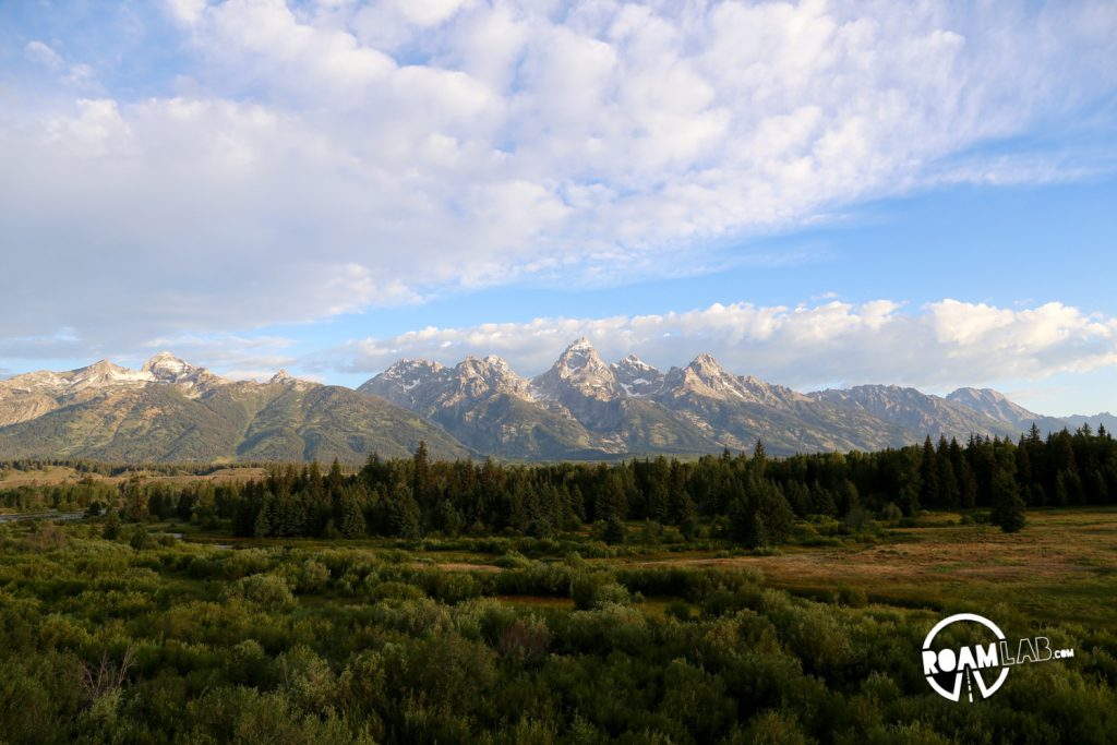 With the sun fully up, the Tetons are set against marshy wetlands.