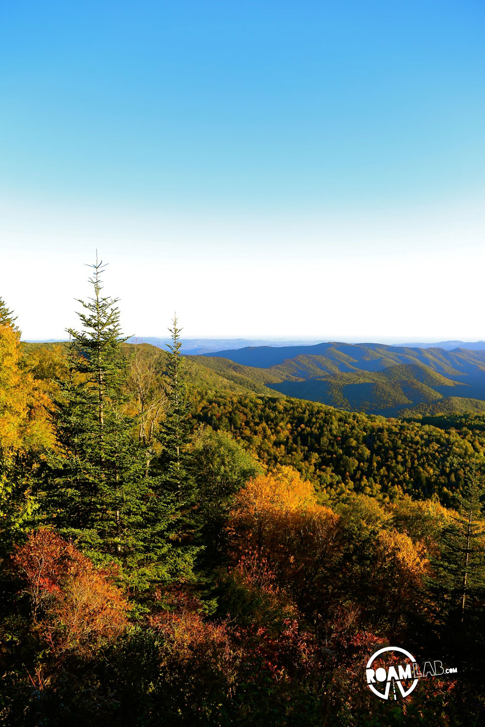 Fall colors on display along the many vistas of the Blue Ridge Parkway.