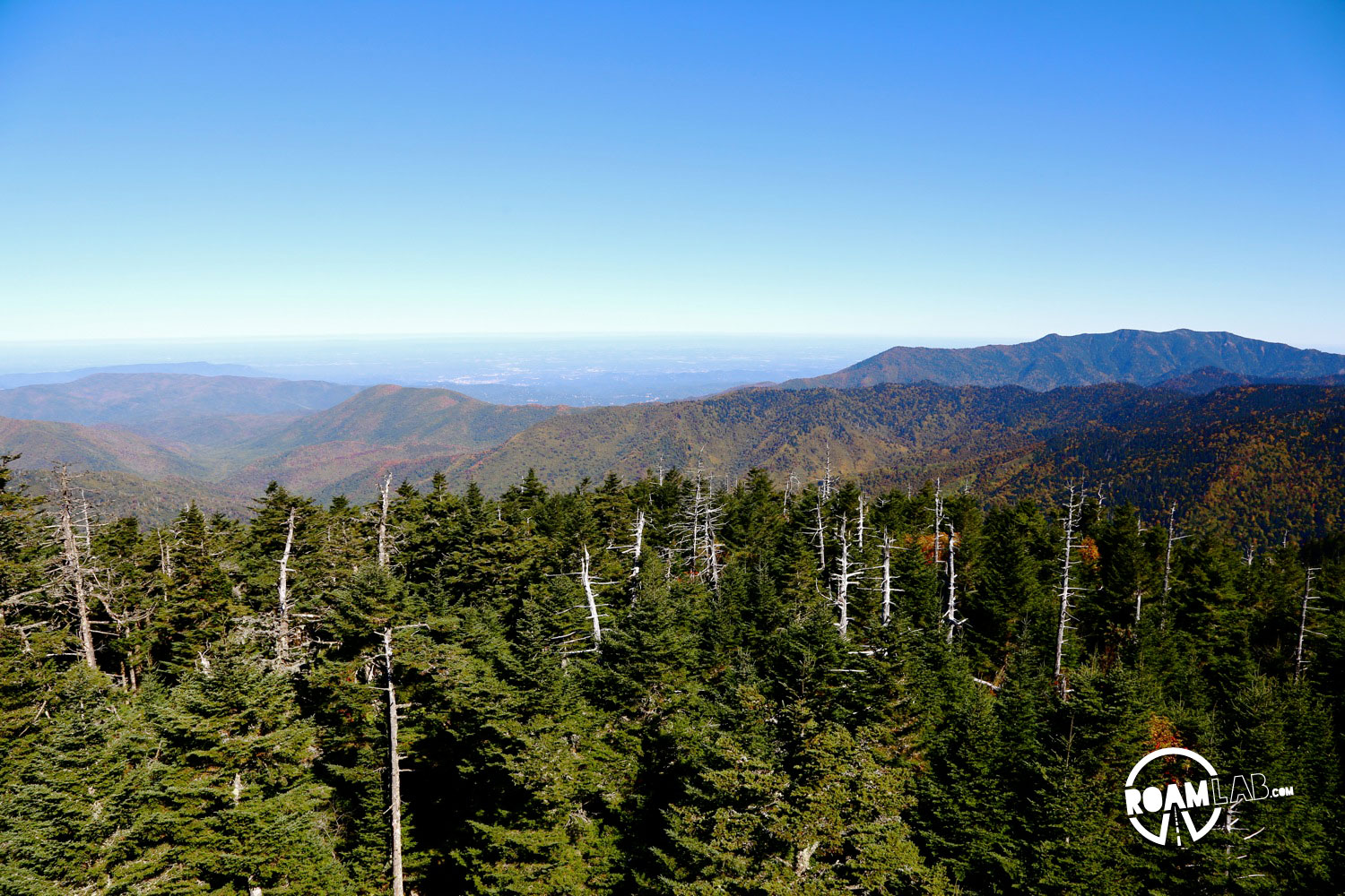 Clingmans Dome Observation Tower Hike - Smoky Mountains ...