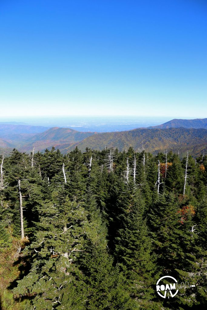 The hike to the top of Clingman's Dome may be steep but the end is an amazing vista of the Great Smoky Mountains National Park.