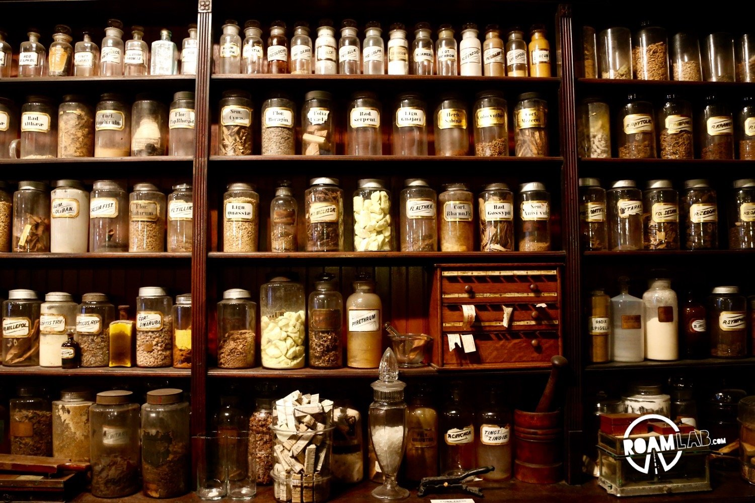 New Orleans Pharmacy Museum explores the history of medicine from leeches to voodoo and everything in between.