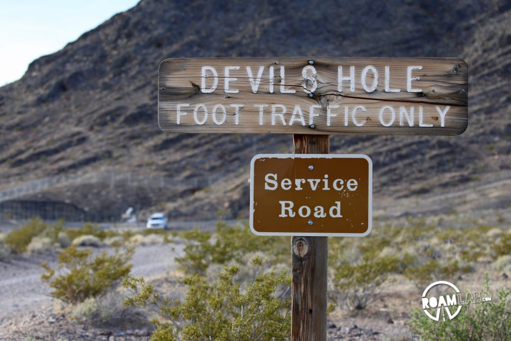 Devils Hole is one of the most fascinating but commonly overlooked natural features in the world for so many reasons. But it seems like only scientists and drunks pay it much head.