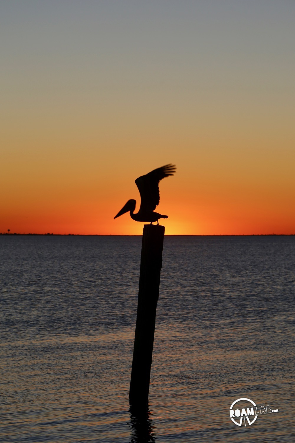 Spanish guitar strummed in the background as we watched the sunset over south padre island one last time.