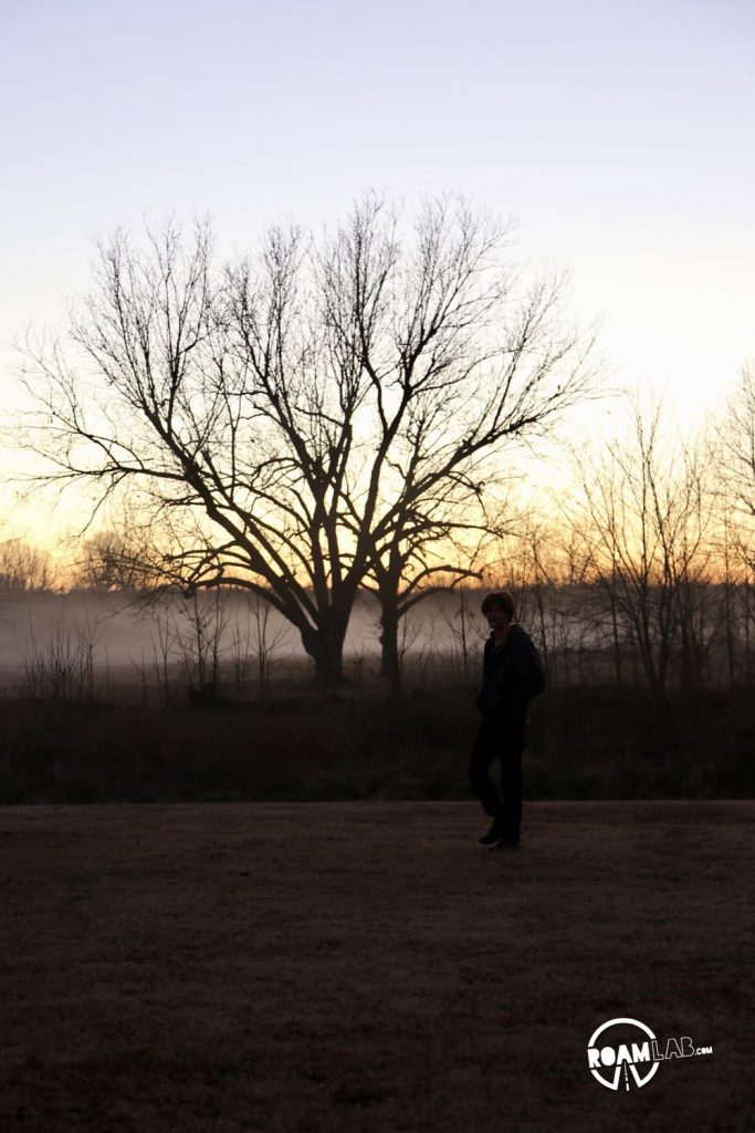 Cowboy inspects a tree at dusk.
