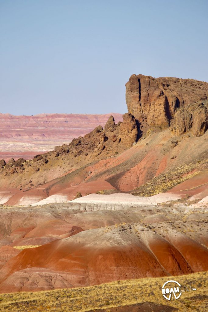 Painted Landscapes, Petroglyphs, And An Ancient Rainforest In Petrified Forest National Park