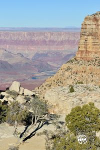 The South Rim of the Grand Canyon is one of the most popular sections of this iconic landmark and our drive along Highway 64 and it's many vistas makes it pretty clear why.