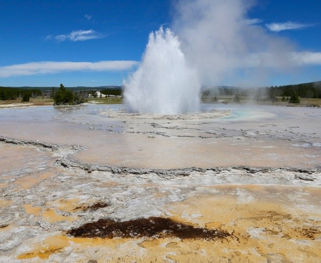 Great Fountain Geyser in Yellowstone National Park
