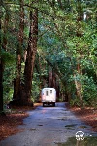 Finding a site in the Pfeiffer Big Sur Campground