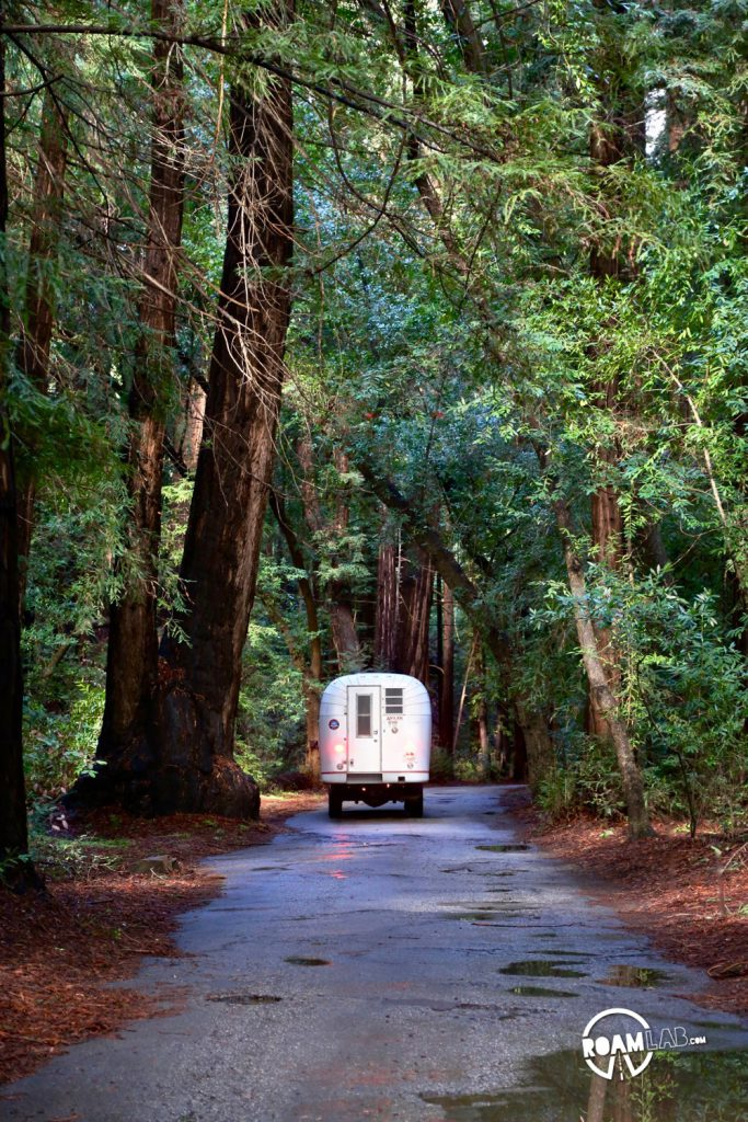 1970 Avion C11 truck camper driving down a redwood lined road. Finding a site in the Pfeiffer Big Sur Campground