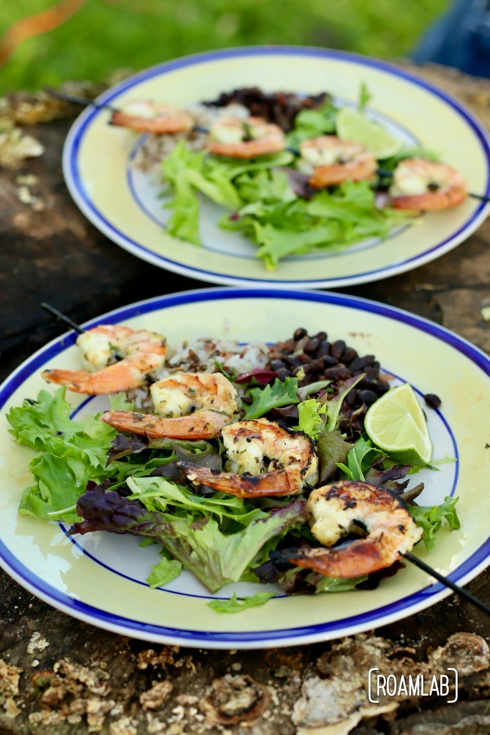 Mix a fresh marinade and up your seafood grilling game with this gourmet lemon herb shrimp skewers campfire cooking dinner recipe.