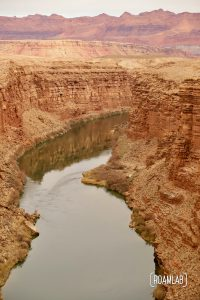 The wide Colorado river carving the cliffs of Marble Canyon.
