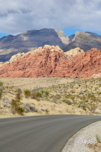 A paved road winding toward red rock cliffs.