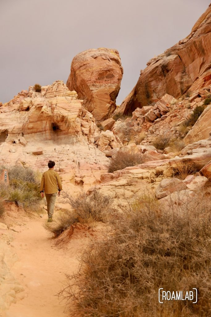 Man walking on a sandy trail toward whimsical rock formations in White Domes Trail in Nevada's Valley of Fire State Park.