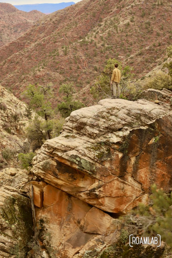 Man standing on a boulder looking out across Dixie National Forest.