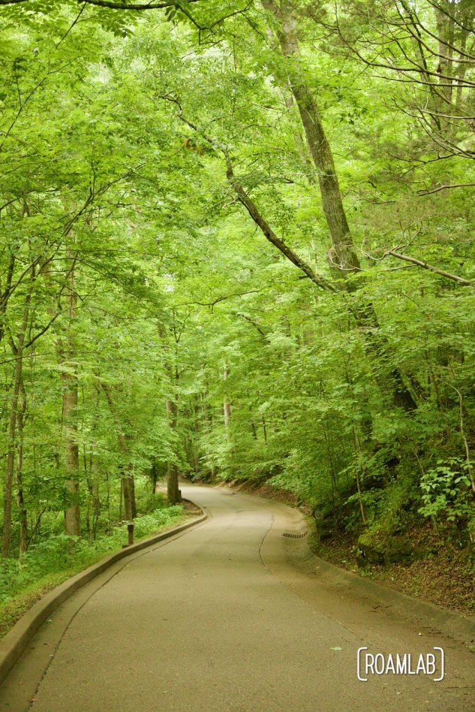 A paved walking trail winding through a green forest down to the historic entrance to the Mammoth Caves National Park.